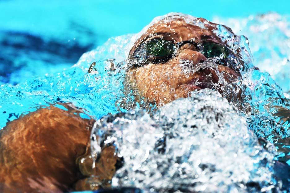 FINA 世界水泳選手権 光州大会 写真展
