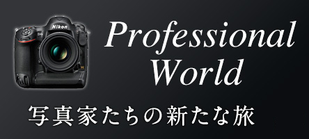 Professional World