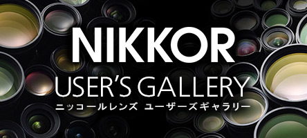 NIKKOR USER'S GALLERY