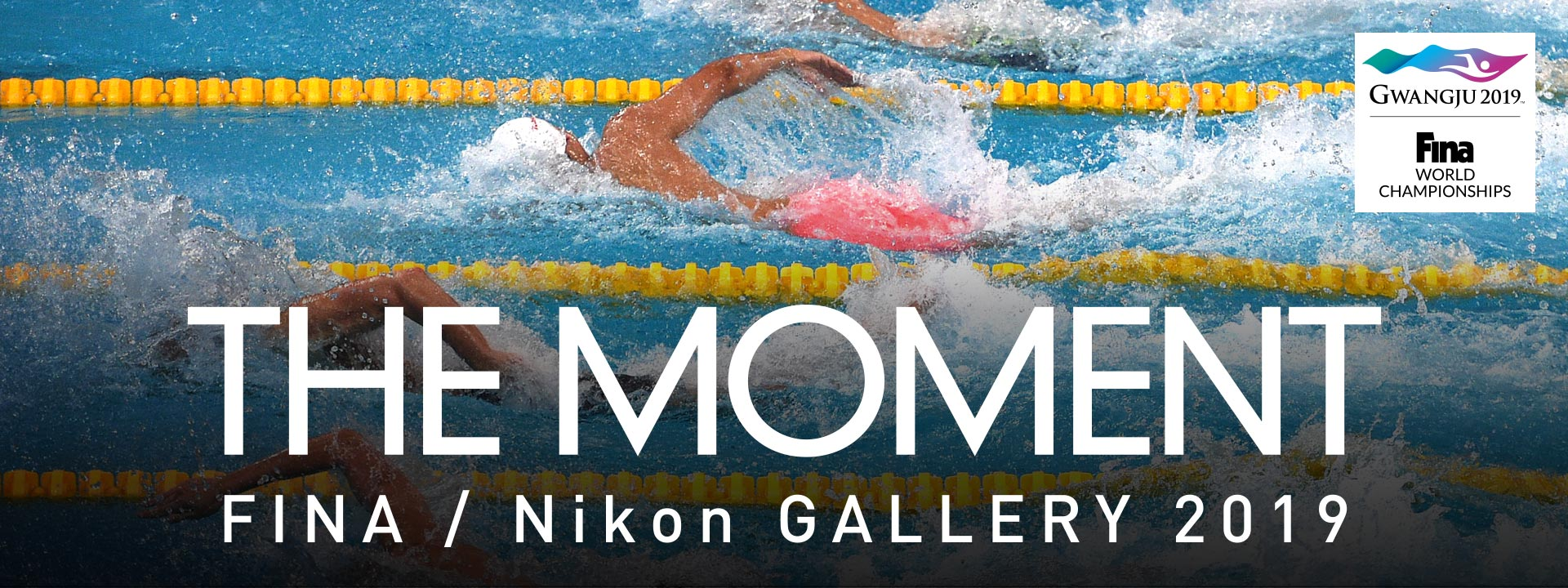 FINA/Nikon GALLERY 2019 -THE MOMENT-
