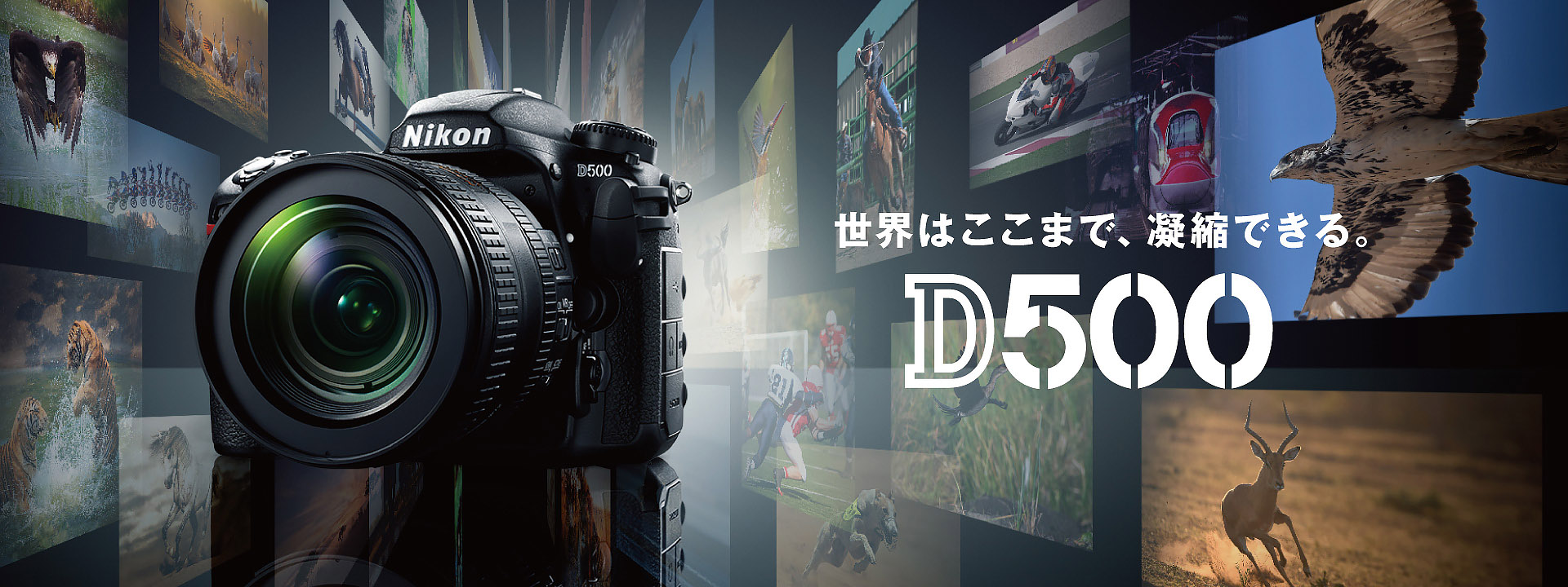http://www.nikon-image.com/products/slr/lineup/d500/img/index/main_01.jpg